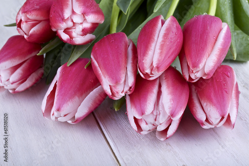 Pink and white tulips on a light background