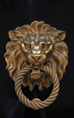 Door knob in the shape of brass lion