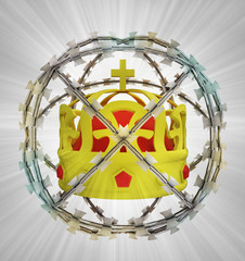 protected crown in barbed sphere fence
