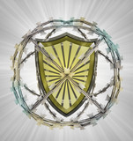 protected shield in barbed sphere fence