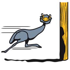 Lustig Emu Strauss rennen witzig comic Cool