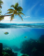 Tropical underwater shot splitted with surface