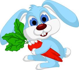 lovely rabbit holds giant carrot