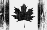 Canadian Flag On A Wood