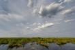 Bootsfahrt im Okavango Delta, Botswana