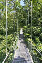narrow suspension bridge over a river with lots of greenery
