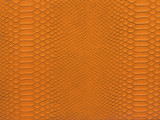snake skin orange color
