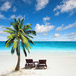 Relaxing under a palm tree on remote beach. - 61540661