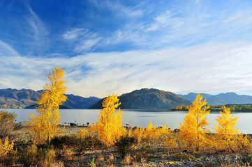 Wanaka lake in New Zealand