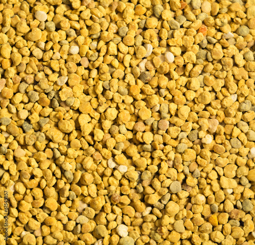 Polline naturale poliflora