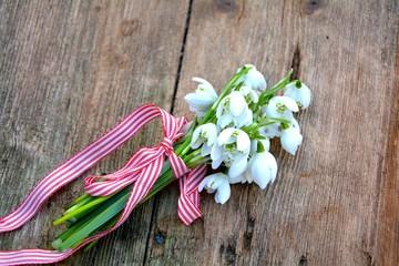 Schneeglöckchen Blumenstrauß