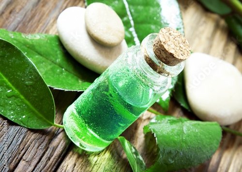 Essential Oil Bottle.Tea Tree Essence