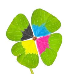 Vierblättriges Kleeblatt, Druckfarben, cmyk, Symbol