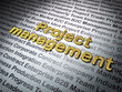 Finance concept: Golden Project Management on Business