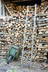Wood Shed full of Logs