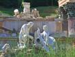 Roman ruins (Ruins of Carthage). Schonbrunn. Vienna, Austria