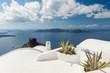 Obrazy na płótnie, fototapety, zdjęcia, fotoobrazy drukowane : Rooftop plants on house in Santorini Greece