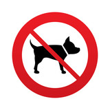 No Dog sign icon. Pets symbol.