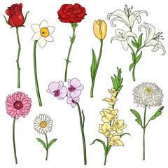 Vector Set of color Cartoon Flowers