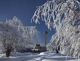 Niagara Falls Rime Ice Trees 2