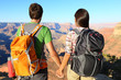 Couple holding hands looking at Grand Canyon