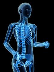 medical 3d illustration - jogging woman - visible skeleton
