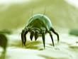 medical 3d illustration - typical dust mite