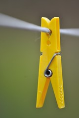 Yellow clothespin hang on a cord