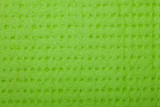 Closeup vivid green sponge background texture pattern