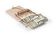 Mouse trap with dollar bills isolated with clipping path.