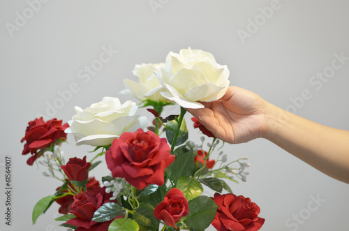 hands with red and white roses. flowers bouquet