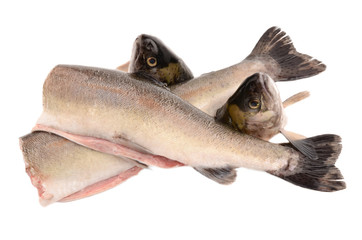 sliced ??trout