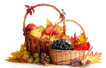 beautiful autumn harvest in baskets and leaves isolated on