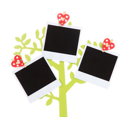 Holder in form of tree with instant photo cards isolated