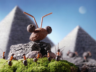ants sphinx and pyramiding, Ant Tales