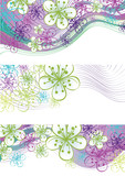 Spring flowers and line border.Design element