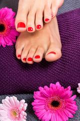 schöne gepflegte weibliche füße mit rotem nagellack
