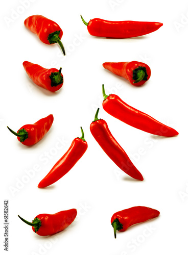 Isolated image of a hot pepper on a white background