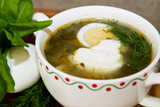 Soup with sorrel, nettles and egg
