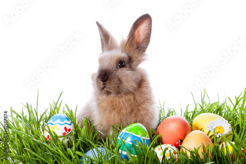 Easter bunny and Easter eggs