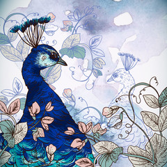 Floral Background with Peacock