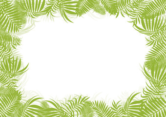 Tropical jungle rain forest vector background blank frame templa