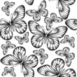 seamless background. butterflies black and white colors.