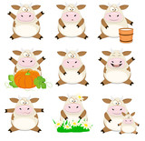 Set of vector cartoon cows
