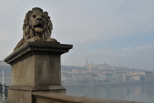 Lion statue on Chain Bridge - Budapest, Hungary