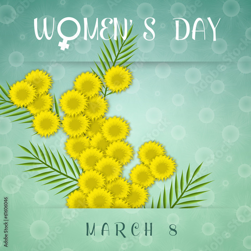 illustration of mimosa for Women's Day