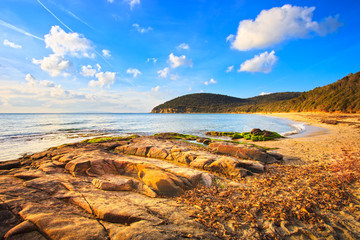 Cala Violina bay beach in Maremma, Tuscany. Mediterranean sea. I