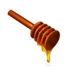 Honey dipper, photo realistic vector