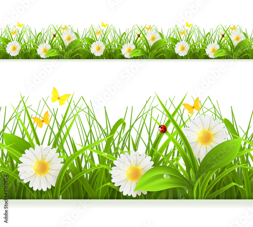Spring green grass seamless border. Detailed vector illustration