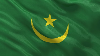 Flag of Mauritania waving in the wind - seamless loop
